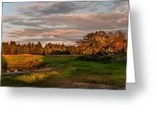 Holy Place. Karelia Greeting Card