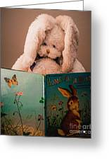 Home For A Bunny 1 Greeting Card