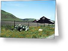 Home Home On The Range Greeting Card