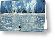 Home On The Cold Greeting Card