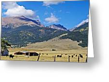 Home On The Range - A Westcliffe Ranch Greeting Card