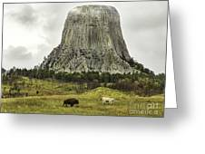 Home On The Range At Devils Tower Greeting Card