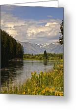 Homeground Waters Landscape Greeting Card
