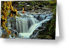 Homestead Falls Greeting Card