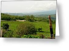 Honduran Homestead Greeting Card