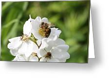 Honeybee Hands Greeting Card