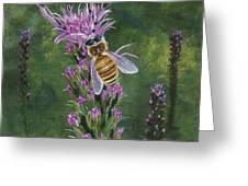 Honeybee On Liatis Greeting Card