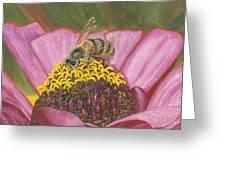 Honeybee On Pink Zinnia Greeting Card