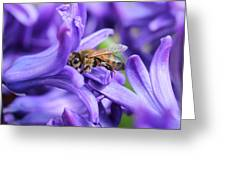Honeybee Peeking Out Greeting Card