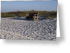 Honeymoon Island Beach Greeting Card