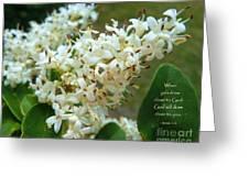 Honeysuckle #2 Greeting Card by Robert ONeil