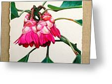 Hong Kong Rose Greeting Card