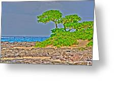 Honolulu Hi 7 Greeting Card