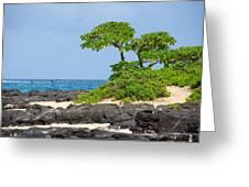Honolulu Hi 8 Greeting Card