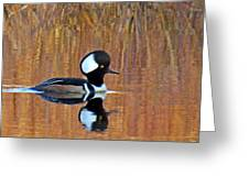 Hooded Merganser At Sunset Greeting Card