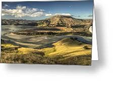 Hoopers Inlet And Cape Saunders New Greeting Card