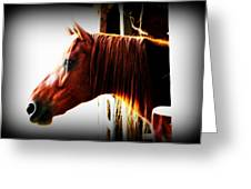 Hope In The Barn Greeting Card