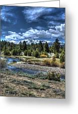 Hope Valley Wildlife Area 2 Greeting Card