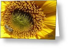 Hopeful - Signed Greeting Card