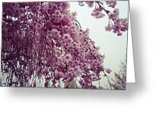 Hopeful Spring Greeting Card