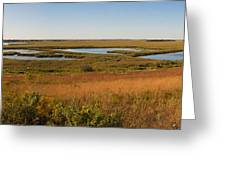 Horicon Marsh Greeting Card