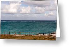 Horizon At Tulum Greeting Card