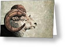 Horned Greeting Card by Priska Wettstein