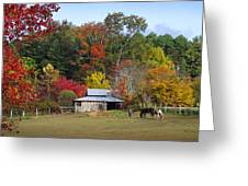Horse And Barn In The Fall 3 Greeting Card