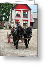 Horse And Buggy Sc3643-13 Greeting Card