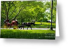 Horse And Carriage Central Park Greeting Card