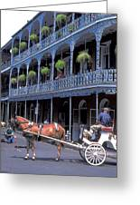 Horse And Carriage In New Orleans Greeting Card