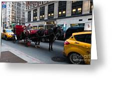 Horse And Carriage Nyc Greeting Card