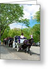 Horse And Carriages Central Park Greeting Card