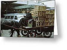 Horse And Cart London 1973 Greeting Card by David Davies