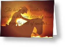 Horse And Rider Silhouette  Greeting Card