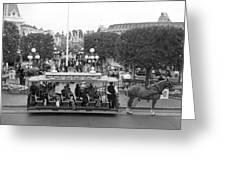 Horse And Trolley Main Street Disneyland Bw Greeting Card