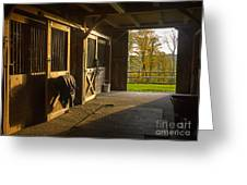 Horse Barn Sunset Greeting Card