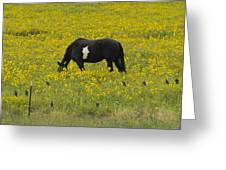Horse  Birds  And Flowers   #8520 Greeting Card