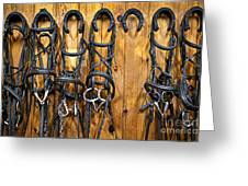 Horse Bridles Hanging In Stable Greeting Card