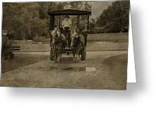 Horse Carriage Tour Greeting Card