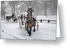 Horse Carriages In Snowy Park Greeting Card