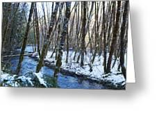 Horse Creek No. 2 Greeting Card