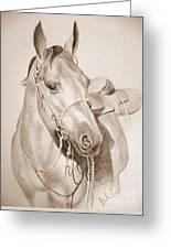 Horse Drawing Greeting Card