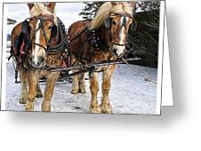 Horse Drawn Sleigh Greeting Card by Edward Fielding