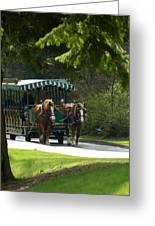Horse Drawn Trolely Greeting Card