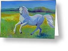 Horse Fancy Greeting Card by Gwen Carroll