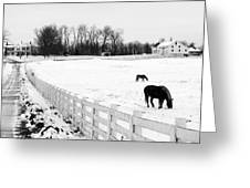 Horse Farm In Winter Greeting Card