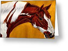 Horse Head Study Greeting Card by Joy Reese