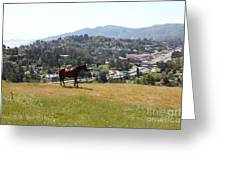 Horse Hill Mill Valley California 5d22662 Greeting Card