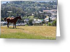 Horse Hill Mill Valley California 5d22663 Greeting Card